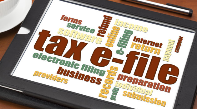 What Does Tax Software Cost